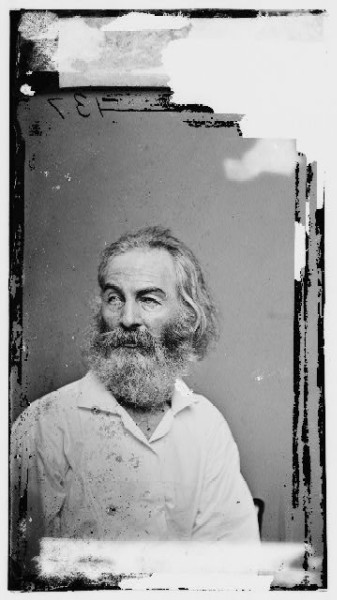 whitman_by_brady